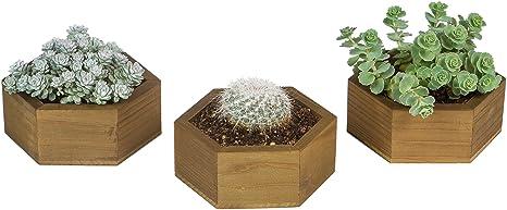 Planter with drainage holes Succulent planter pot Cactus planter Rustic planter  Brown   6 x 3 12  inches  3-c