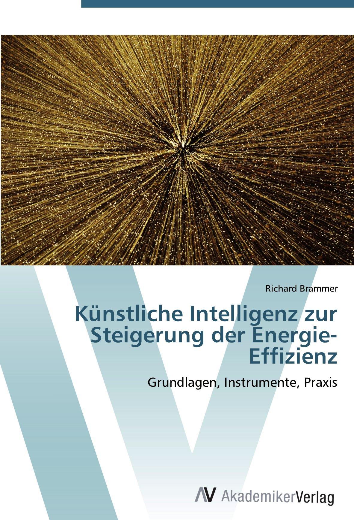 Künstliche Intelligenz zur Steigerung der Energie-Effizienz: Grundlagen, Instrumente, Praxis