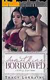 Something Borrowed (A Wedding Season Series)