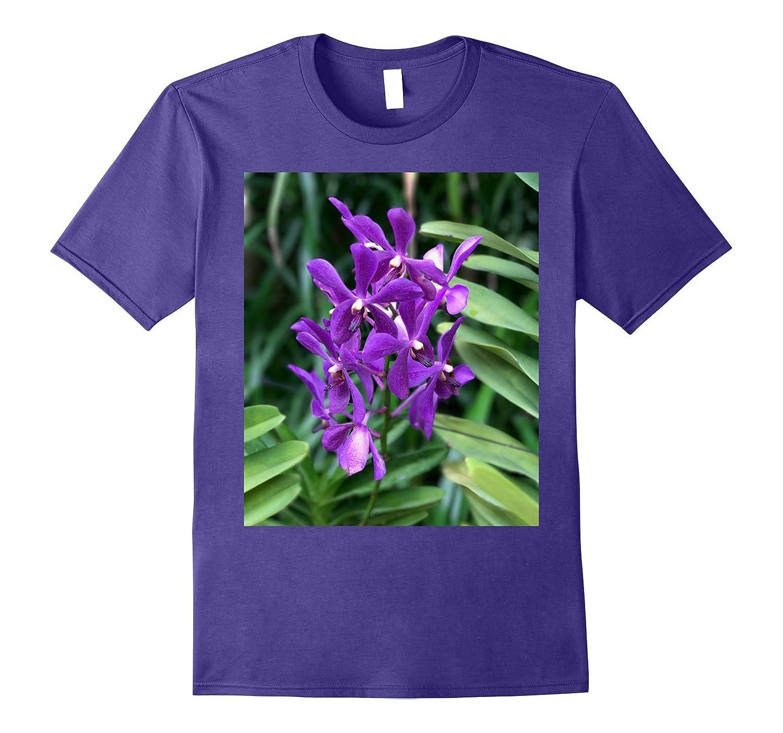 Beautiful purple orchids from Singapore Botanical Gardens-FL