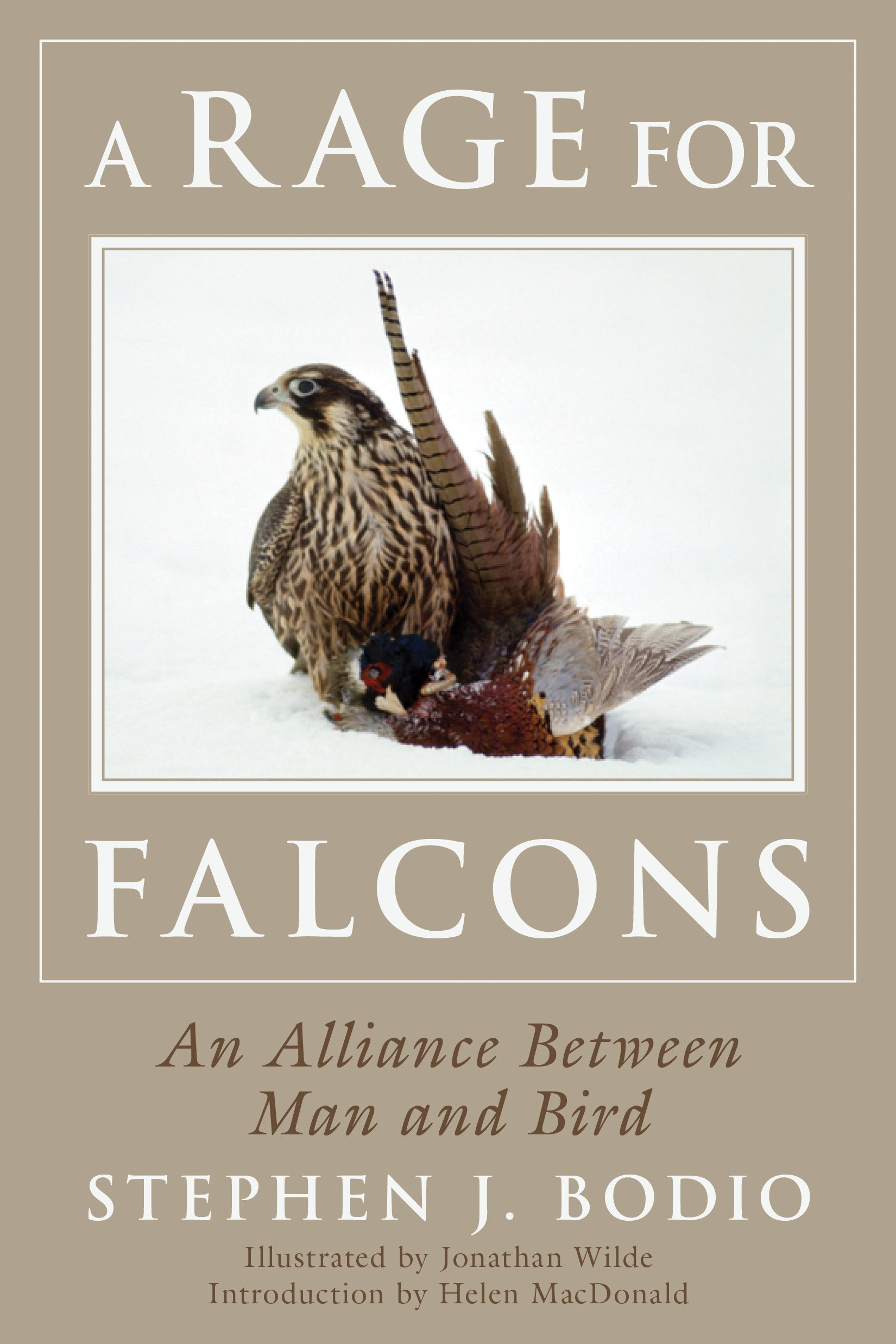A Rage For Falcons: An Alliance Between Man And Bird: Stephen Bodio,  Jonathan Wilde, Helen Macdonald: 9781634506724: Amazon: Books
