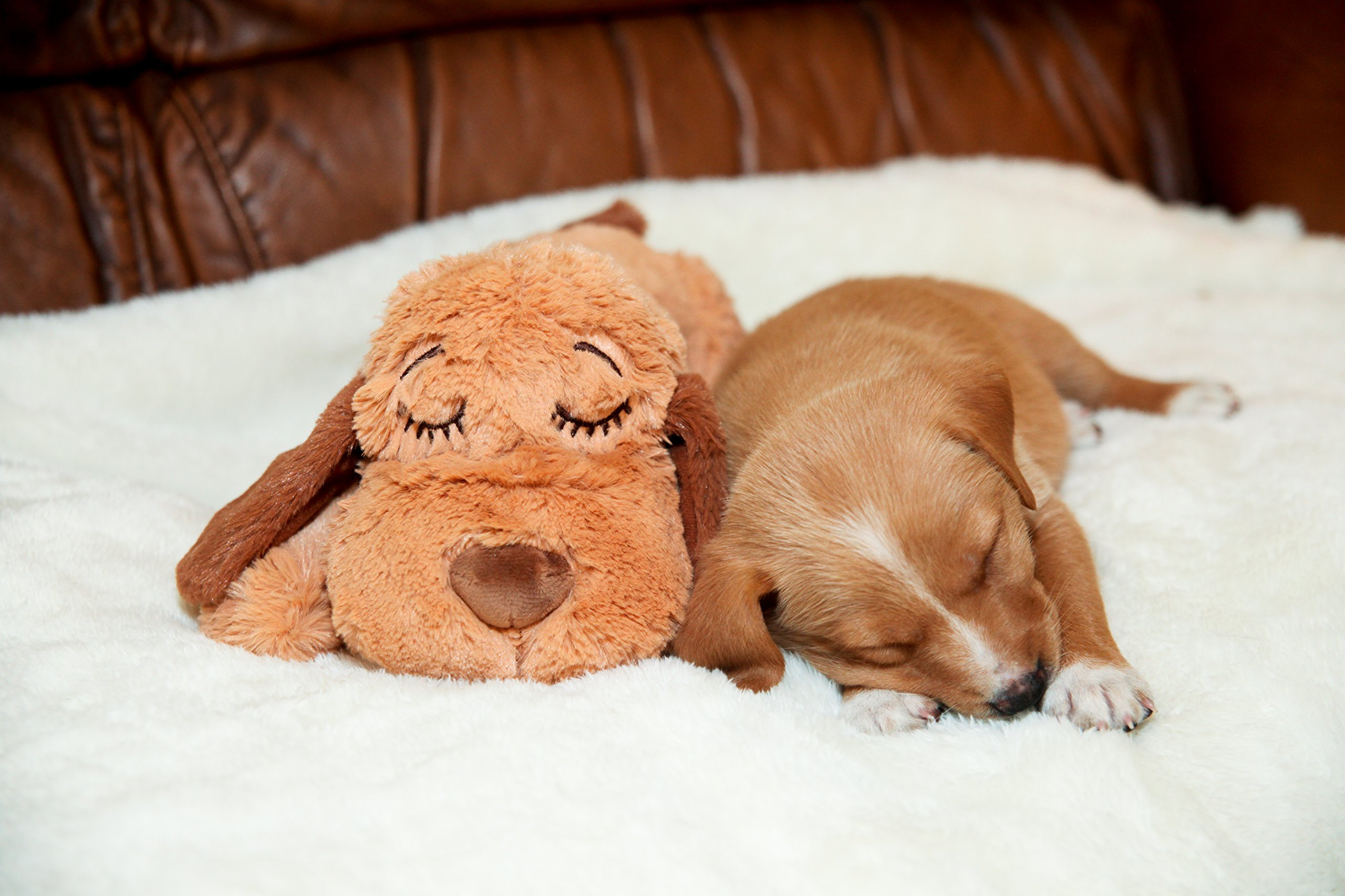 Smart Pet Love Snuggle Puppy Behavioral Aid Toy, Brown Mutt by Smart Pet Love (Image #6)