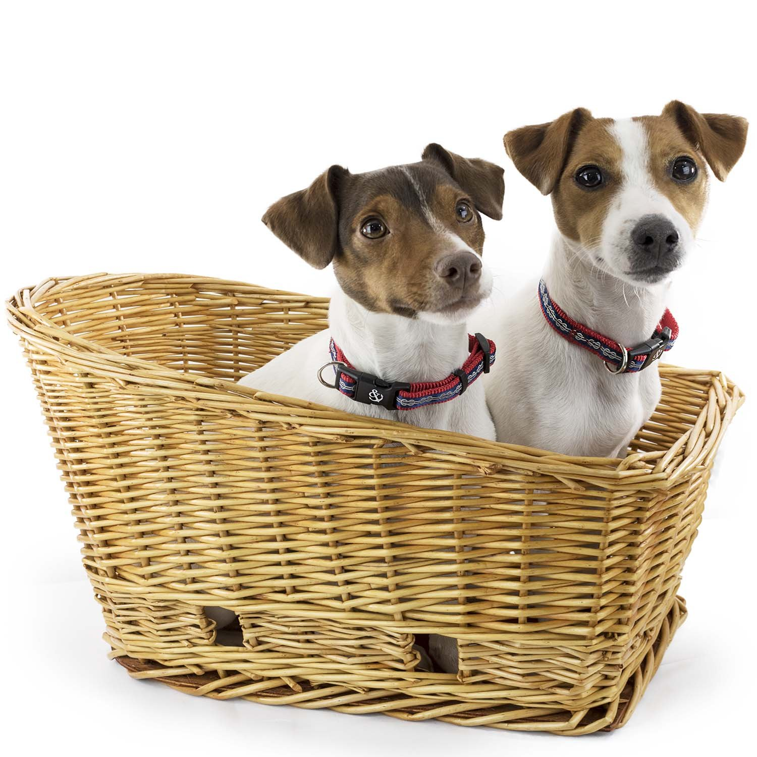 Large Rear Mount Willow Bicycle Basket for Dogs - Hand Crafted By Beach and Dog Co - Leashes Included (Cape May Large)