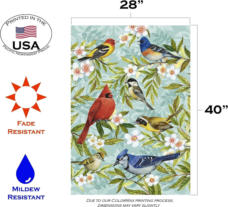 Toland Home Garden 112582 Bird Collage 12.5 X 18 Decorative USA-Produced Garden Flag