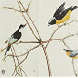 Alink Spring Birds Paper Napkins, 20 Count Shabby Chic Napkins for Wedding, Dinner Tea Party Shower ¡