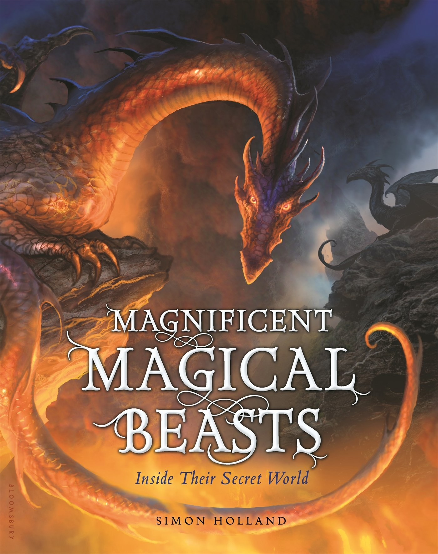 Magnificent Magical Beasts: Inside Their Secret World: Simon Holland ...