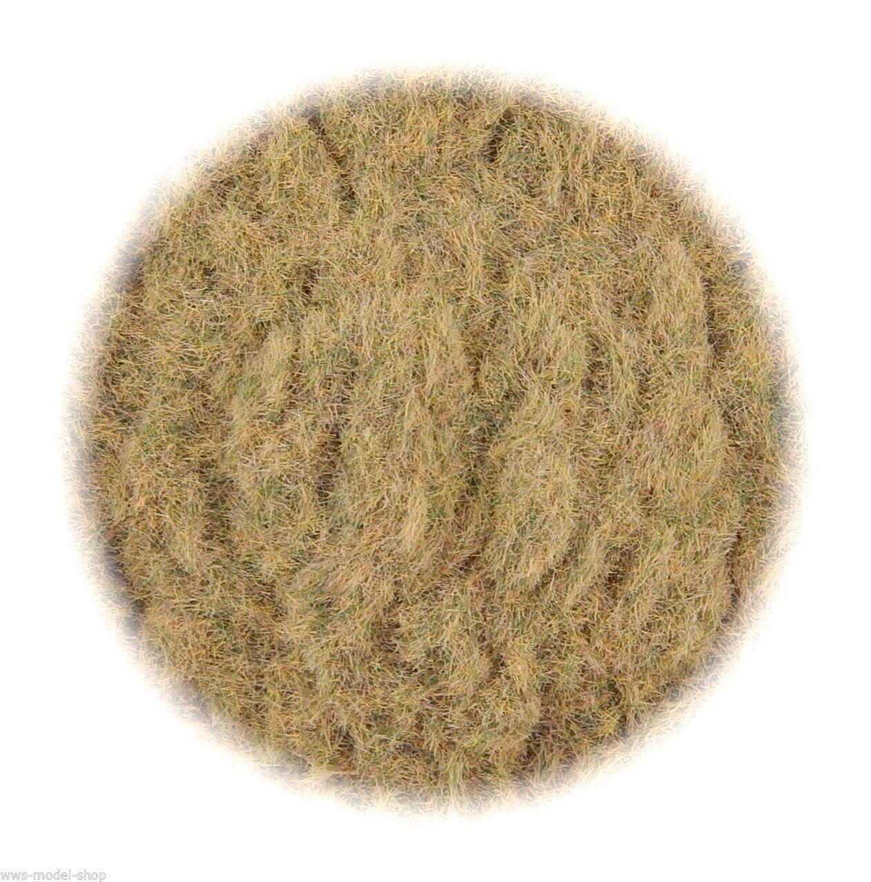 WWS Farm Field B 2mm Mix 10g Model Wargames Basing Model Static Grass 10g G,O,HO/OO,TT,N.Z Wargames B01LYT4AYL, 八女茶の製造直売 お茶の浅野園:51f01528 --- ijpba.info