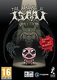 Binding of Isaac (PC DVD)