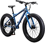 How Do I Choose A Fat Bike? A Complete Guide In 2021! 3