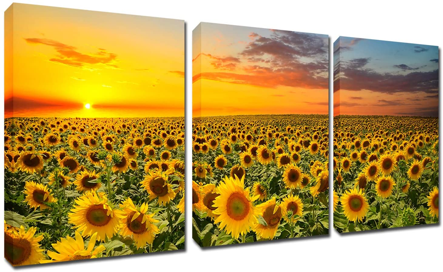 Sunflowers Painting Wall Art Canvas - Sunshine 3 Panles Framed Pictures Florals Giclee Prints Modern Home Decor Sunset Landscape Artwork Yellow Flowers for Living Room Kitchen Ready to Hang 12x16inch