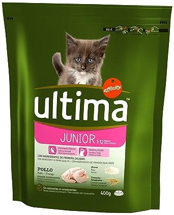 Ultima Cat - Junior 2-12 Pollo & Arroz 400 g: Amazon.es: Alimentación y bebidas