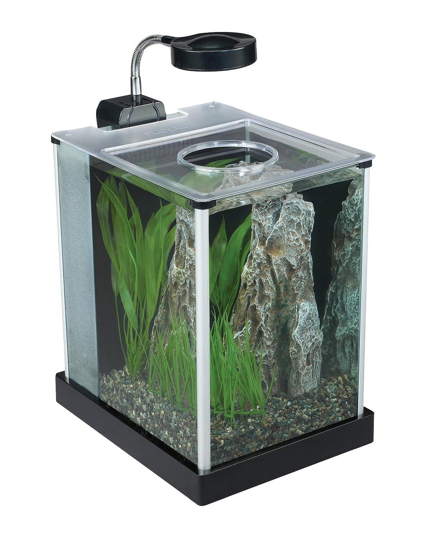 Amazon.com : Fluval SPEC Desktop Glass Aquarium, 2 Gallon : Aquarium Decor  : Pet Supplies