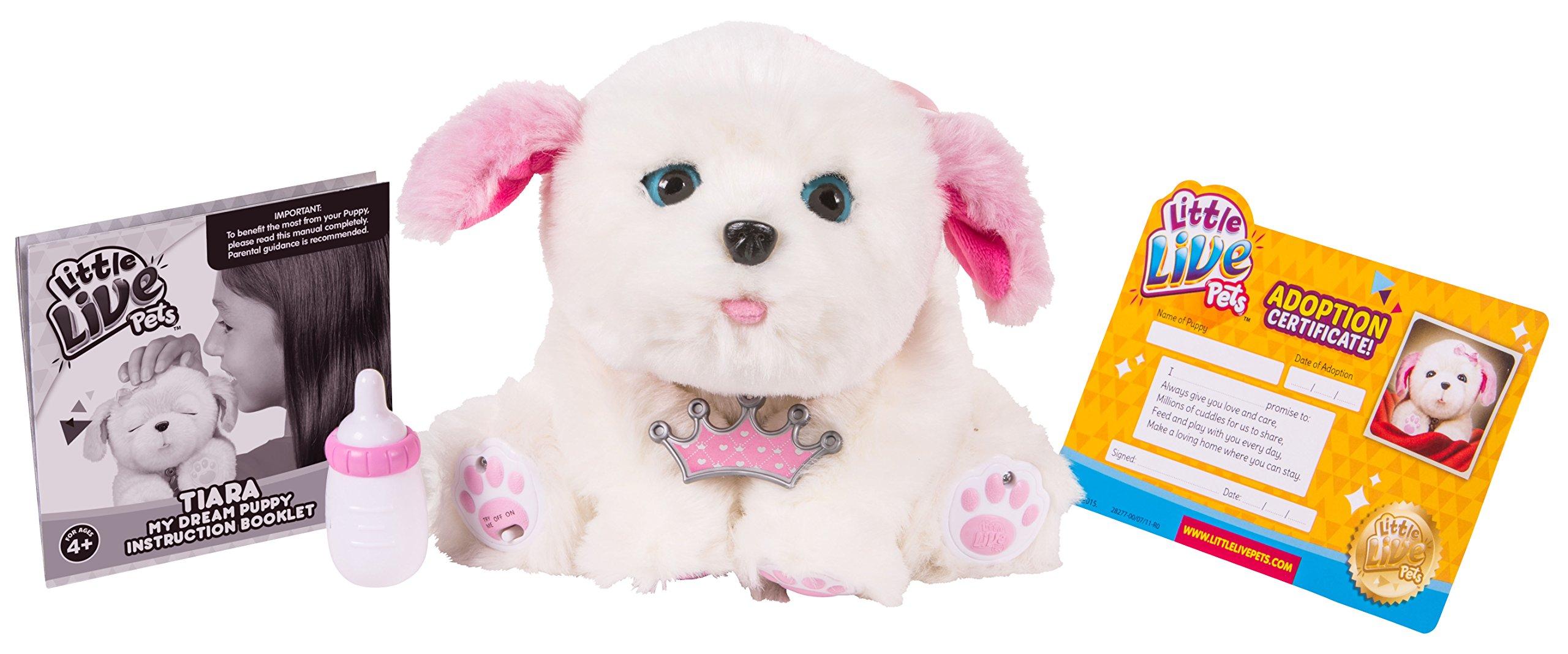 Little Live Pets Tiara My Dream Puppy Buy Online In Mongolia At Desertcart