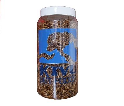 Gusanos de comida secos para pájaros, pájaros salvajes, peces y pequeños reptiles. Botella