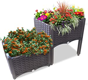 ACG-INC Elevated Raised Garden Bed Kit Plastic, Planter Boxes Outdoor with Self-Watering Design and Legs, Planters for Vegetables Flowers Herbs (2 Planter Boxes)