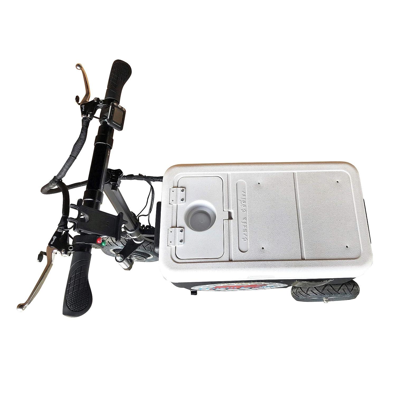 Amazon.com: Cruzin Cooler CZ-HB Patinete de hielo motorizado ...