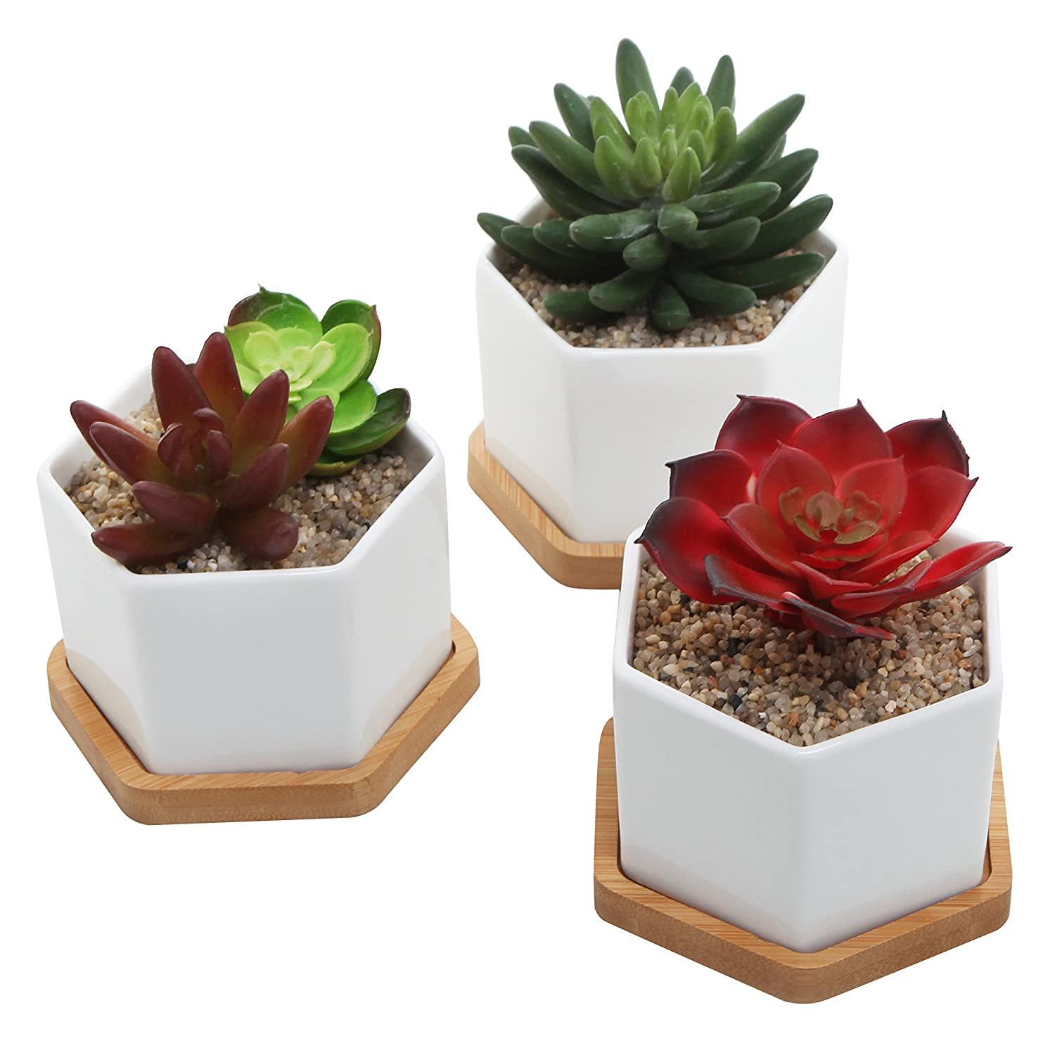 amazon com small ceramic hexagonal succulent planters flower