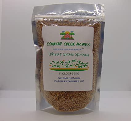 3 oz Barley NON GMO microgreen seeds for Sprouting Sprouts Organic
