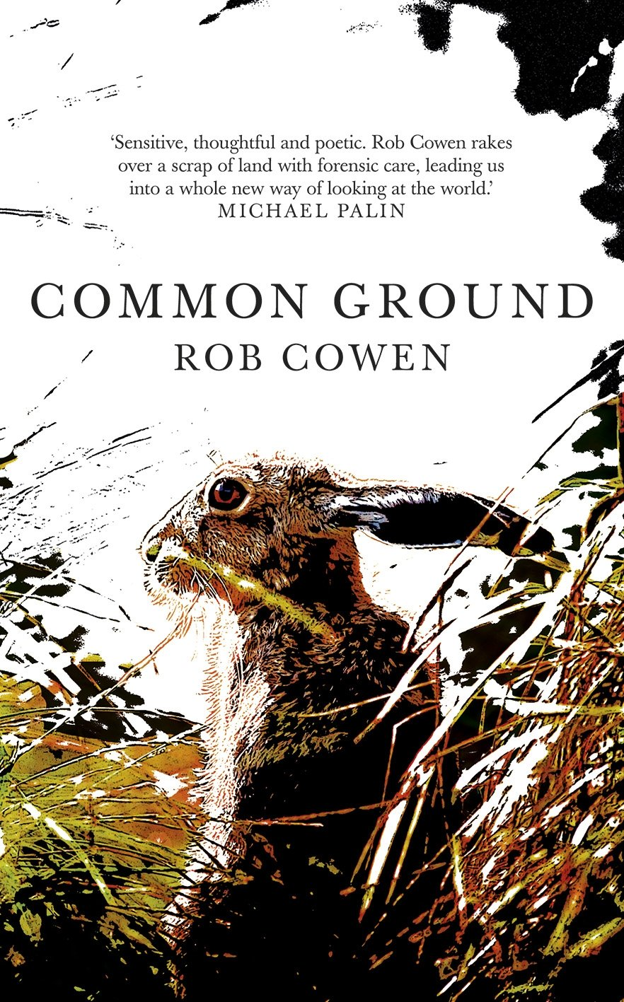Image result for common ground cowen