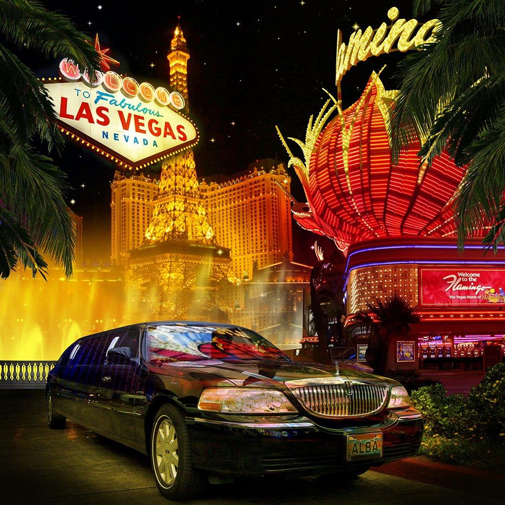 写真バックドロップ – ラスベガスNights with Car – 10 x 10 ft。シームレスなファブリック   B00OJOF7PQ