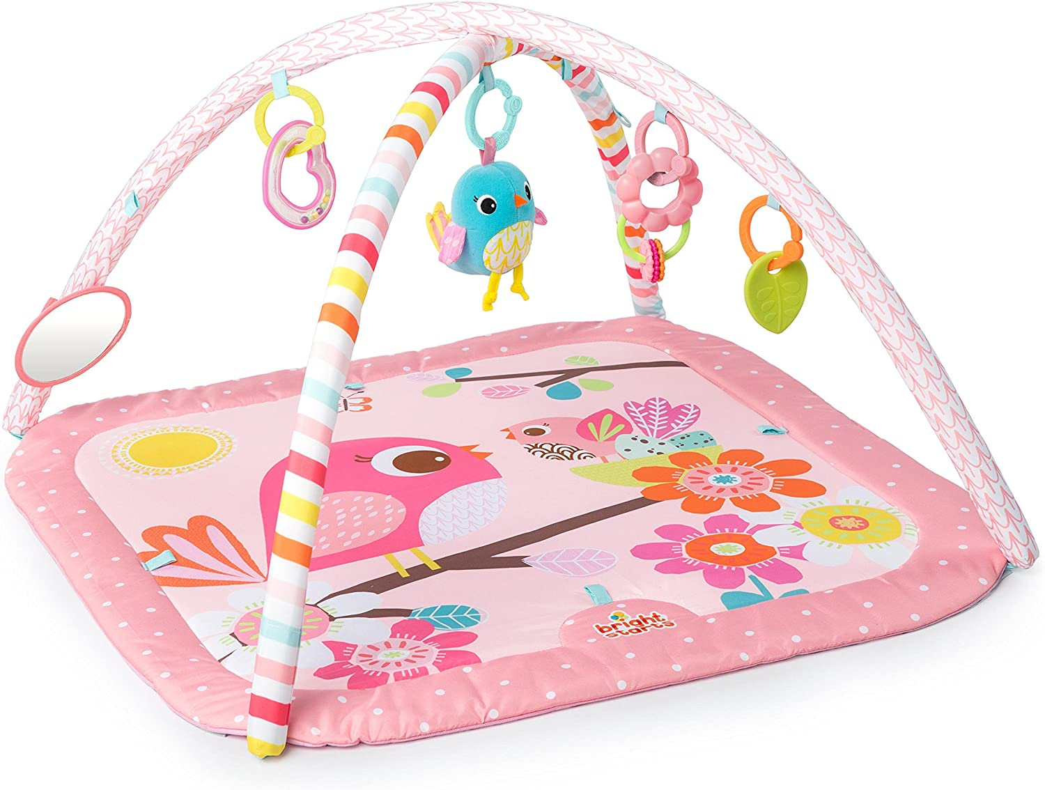 Bright Starts Bird and Bloom Activity Gym