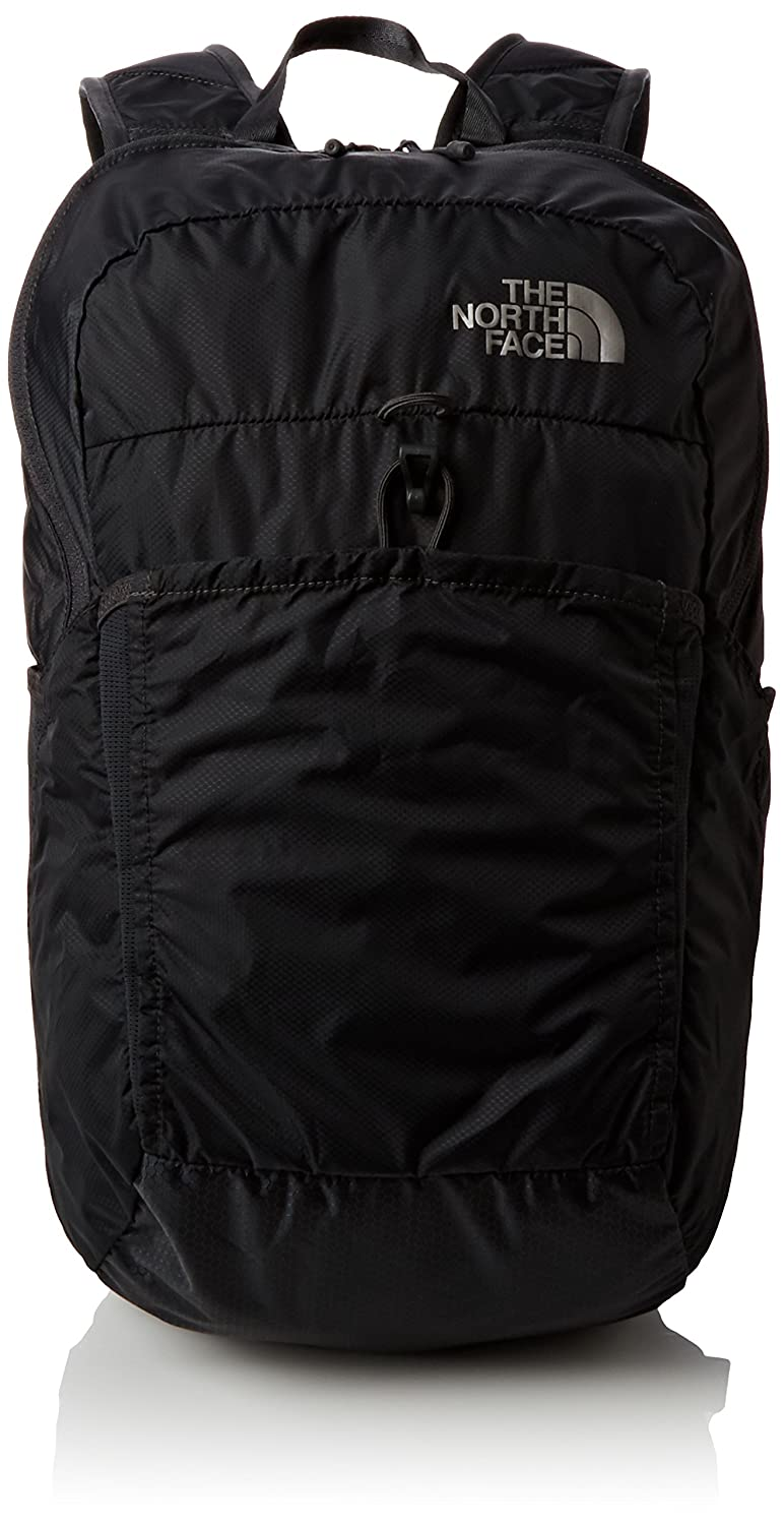 1caa42bcb Amazon.com: The North Face Flyweight Pack, Asphalt Grey, One Size ...