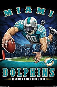 Trends International NFL Miami Dolphins - End Zone 17 Wall Poster, 22.375