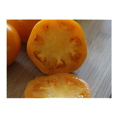 Garden Peach 25 Heirloom Tomato Seeds -Op Non GMO - Golden Color -Round Fruit- Gourmet Rich Flavor- Market Or Home : Garden & Outdoor