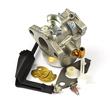 Amazon Briggs Stratton 798653 Carburetor Replaces 697354