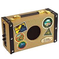 Luna Guitars AG5 Acoustic Ambience Portable Akustikgitarre Verstärker (5 Watt)