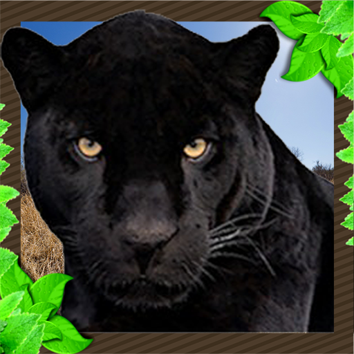 Wild Panther Attack Unlimited Simulator