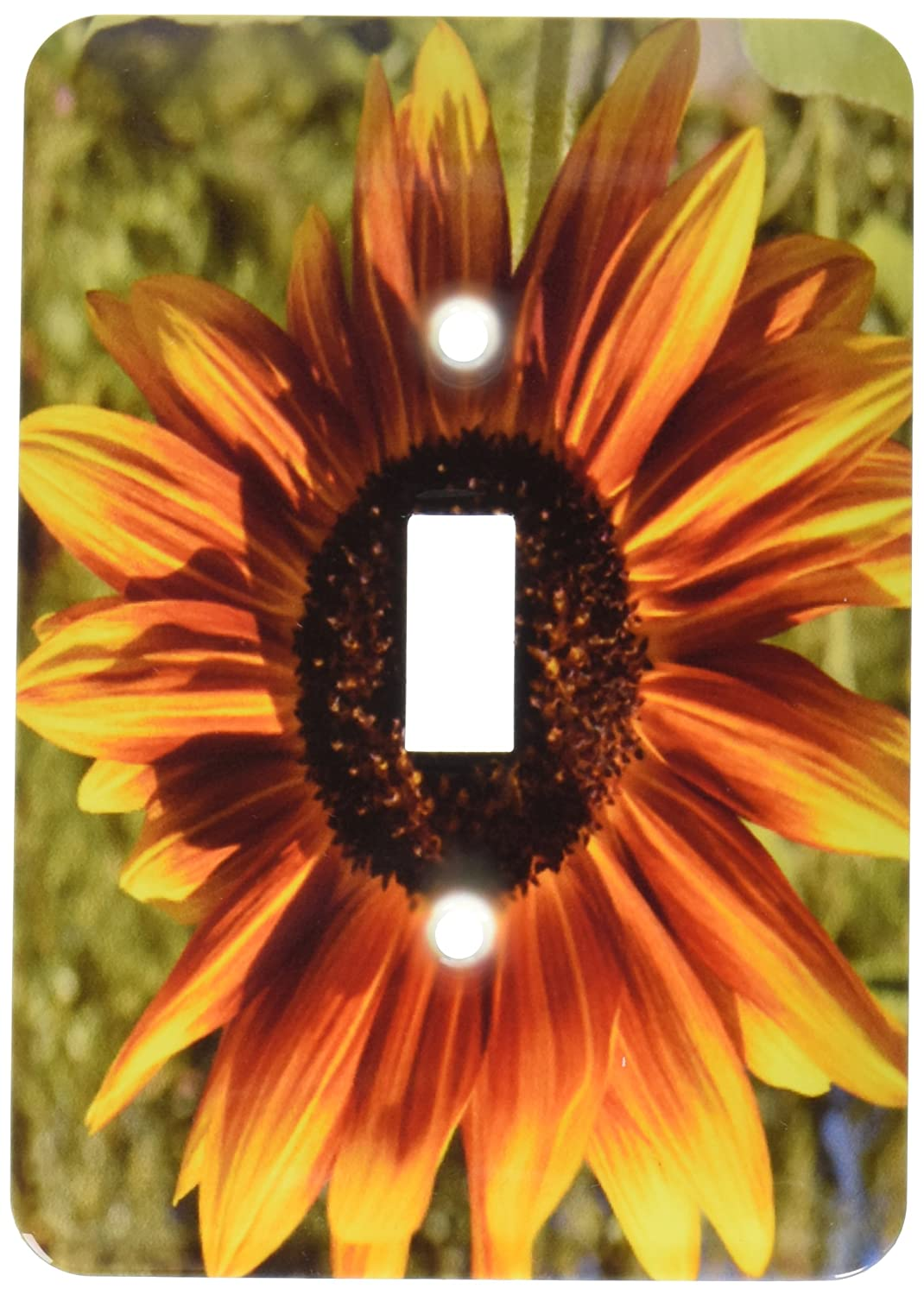 3dRose lsp_30794_1 Orange and Yellow Summer Sunflower Flowers Single Toggle Switch