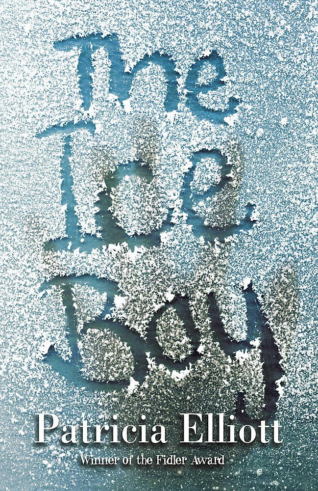 The Ice Boy ebook