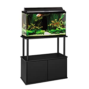 Stand with storage for 20 gal long