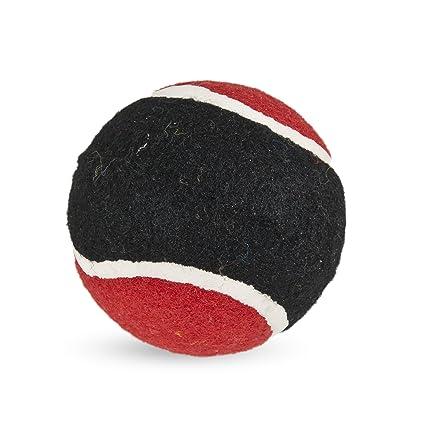 Petmate 207136 Pelota de Tenis Dura Dogzilla, L, 7.5 cm: Amazon.es ...