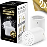 15-Stage Replacement Premium Filter Cartridge 2-Pack (No Housing), Compatible with Any Shower Filter of Similar Design Universal High Output EW-SF - 15 AquaHomeGroup…