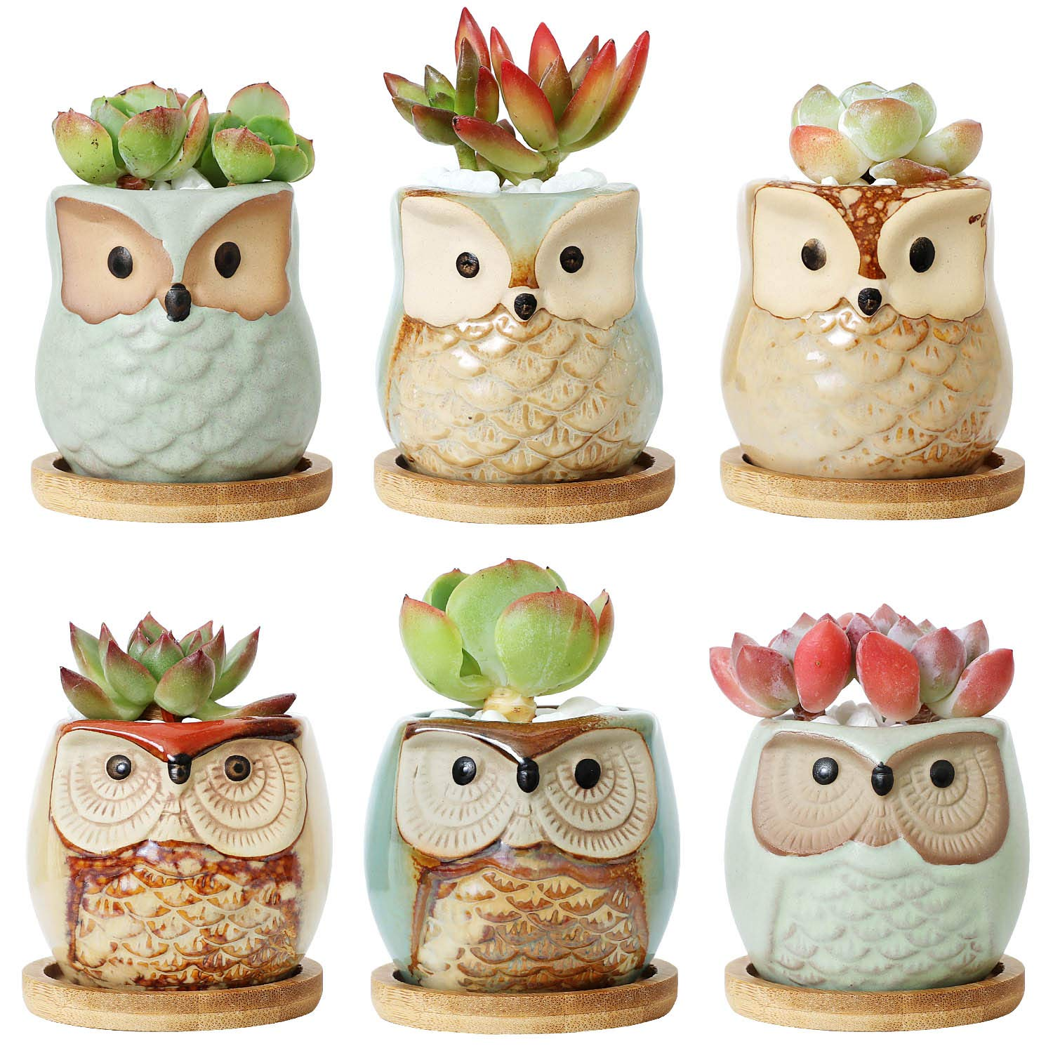 T4U 2.5 Inch Ceramic Succulent Planter Pots with Free Bamboo Saucers Mini Size Set of 6, Cute Owl Bonsai Pots Home and Office Decoration Desktop Windowsill Gift for Gardener