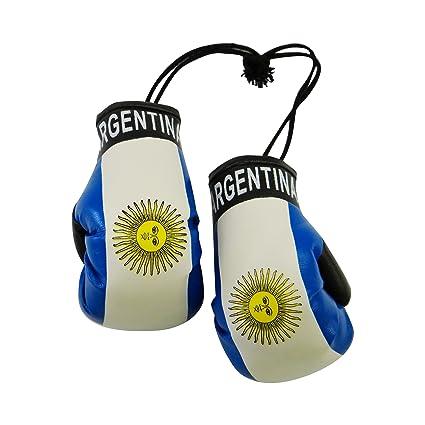 Amazon.com: Argentina País Bandera Mini guantes de boxeo ...
