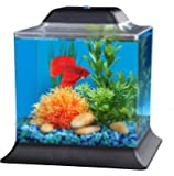 API Betta Kit Cube Fish Tank, 1.5 gallon