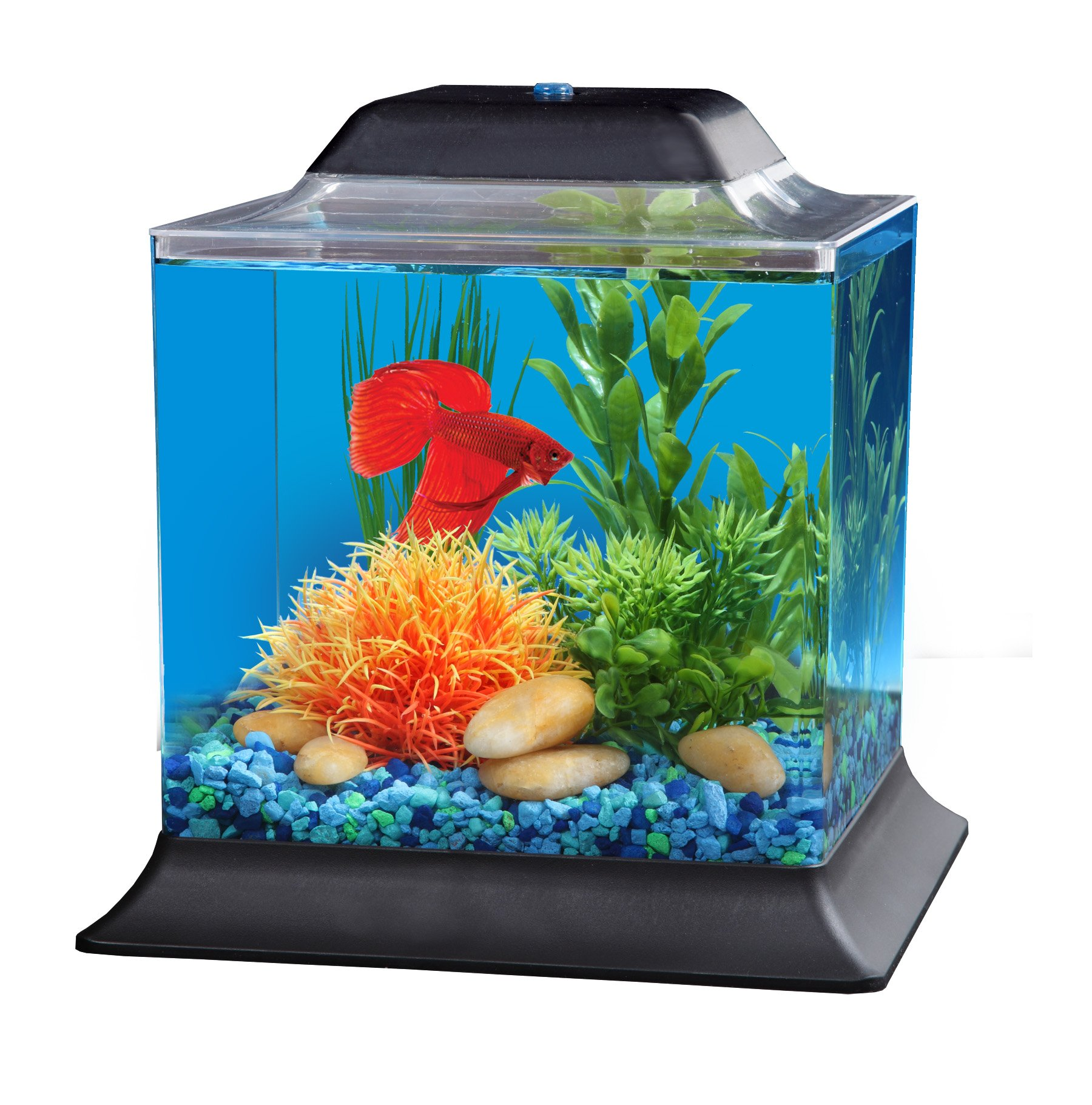 Unique betta fish tank cube with led light betta fish tank for Fish tank lighting