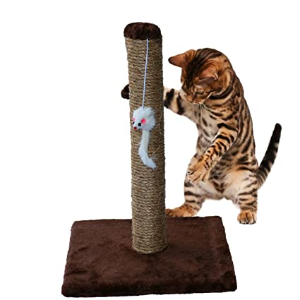 Clever Scratching Post Toy For Cats Catnip Tower Climbing Tree Cat Scratch Pad Board Protecting Furniture Foot Natural 100% High Quality Materials Pet Products