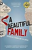 A Beautiful Family (Silverman Saga Book 1)