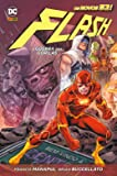 Flash - A Guerra dos Gorilas