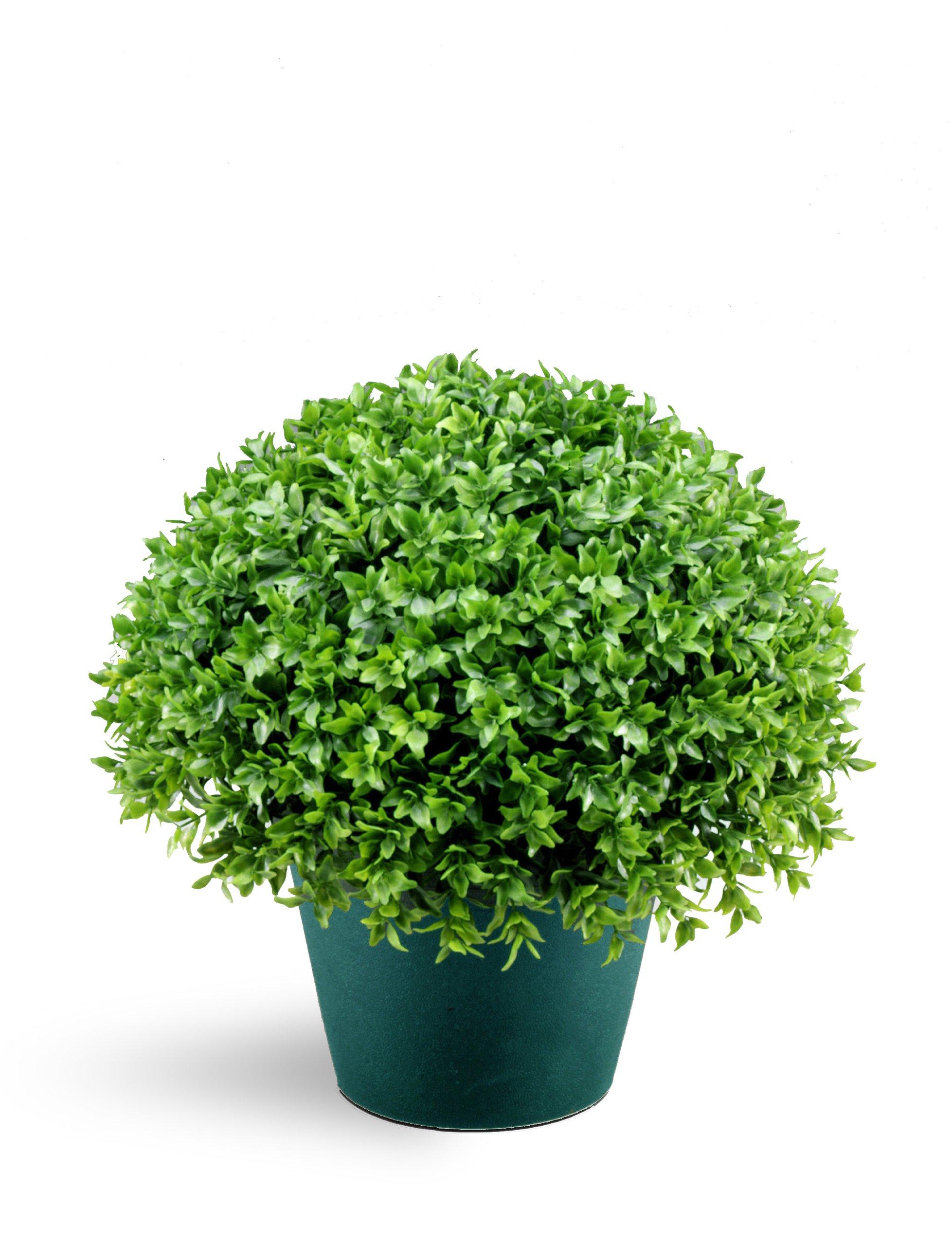 National Tree 13 Inch Globe Japanese Holly Bush in Dark Green Round Plastic Pot (LJB4-13-1) by National Tree Company