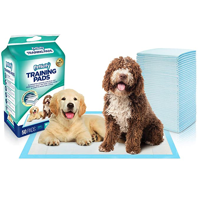 Empapadores de adiestramiento para perro, alfombrillas muy absorbentes para proteger el suelo: Amazon.es: Productos para mascotas