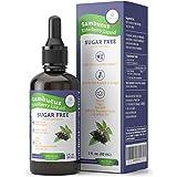 Organic Elderberry Syrup for Kids & Adults - 200mg Sugar-Free Immune System Support - Vegan Sambucus Nigra Liquid…