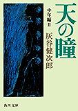 天の瞳 少年編II (角川文庫)