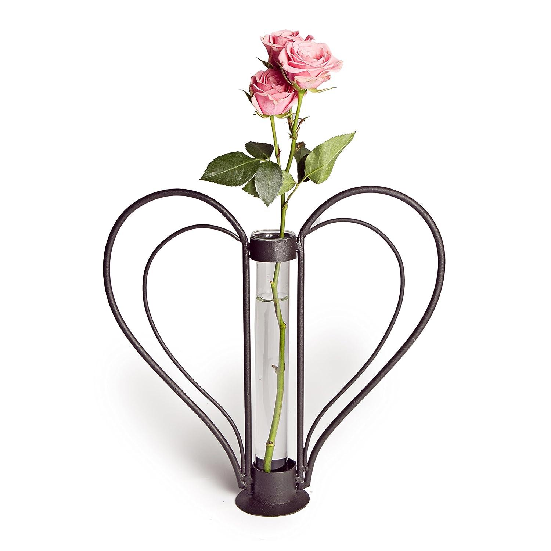 Amazon danya b sweetheart iron heart shaped bud vase home amazon danya b sweetheart iron heart shaped bud vase home kitchen reviewsmspy