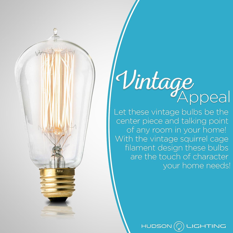 2100K Warm White Edison Light Bulbs Clear Glass Vintage Incandescent Edison Bulb Set: 60 Watt E26 Base Dimmable Antique Exposed Filament 230 Lumens 4 Pack HUDSON LIGHTING H/&PC-72825 ST58 Decorative Lightbulbs
