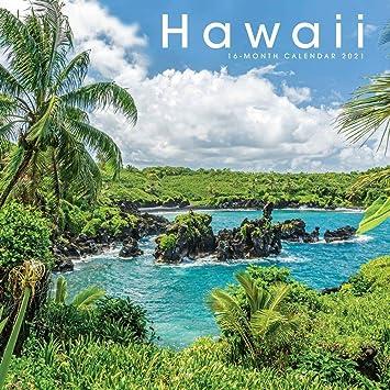 Calendario Atpl 2021 Amazon.com: Calendarios de carrusel, 2021 Hawaii Calendario de